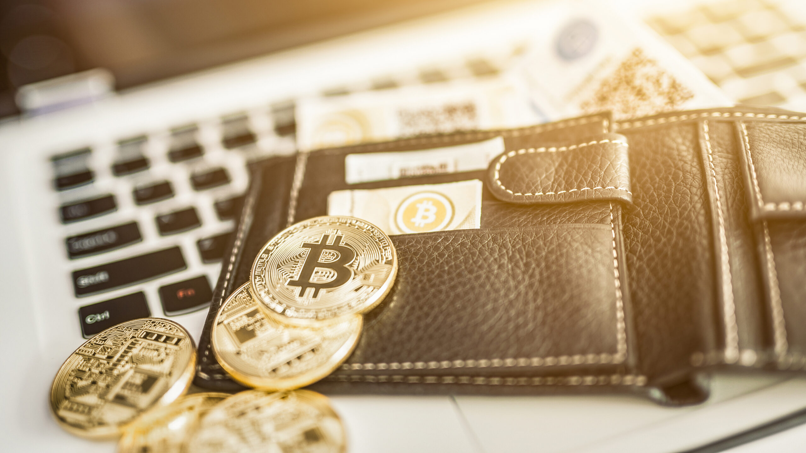 5 Best Crypto Wallets of 2021
