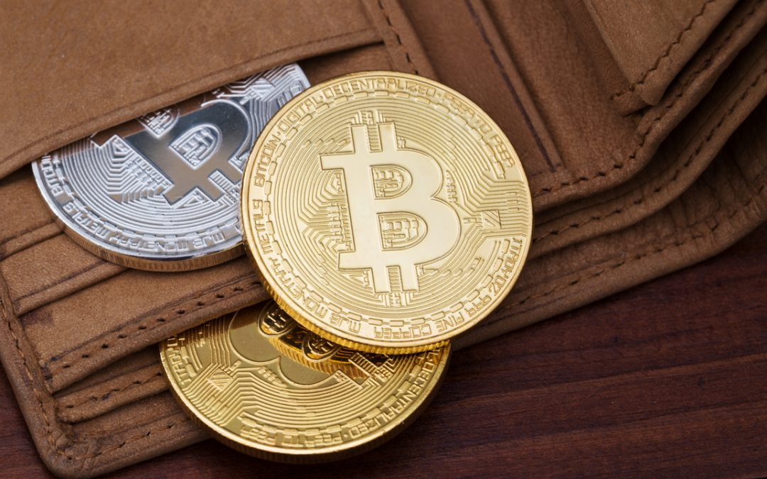 Things You Must Know About WHAT IS A CRYPTOCURRENCY WALLET?